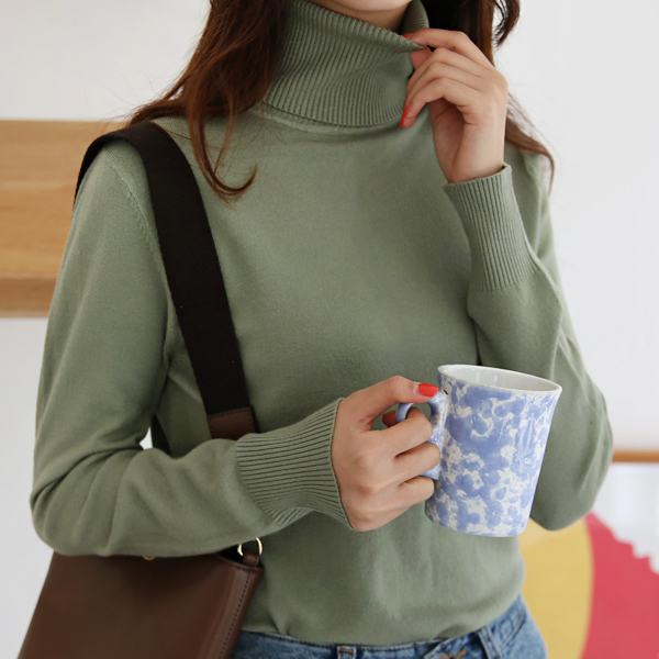 Rib Hem Turtleneck Knit Top