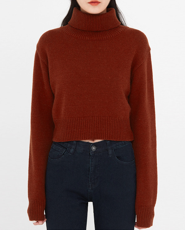 mean crop wool turtleneck knit