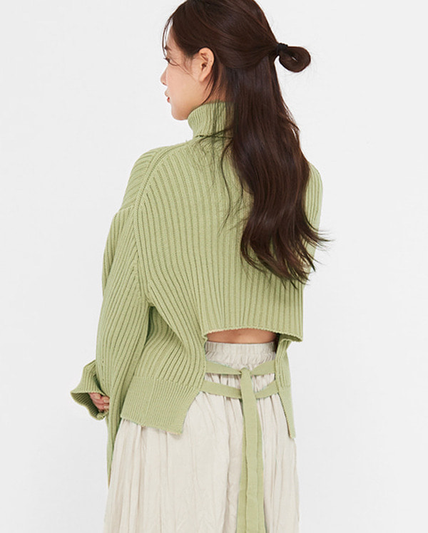 add back ribbon turtleneck knit