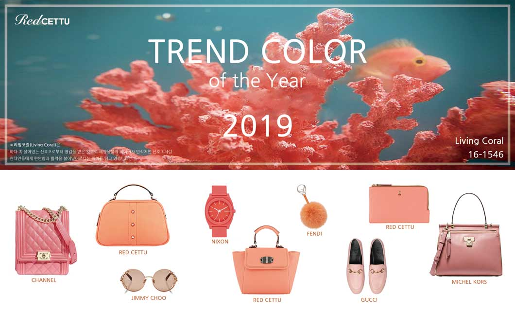 2019 TREND COLOR
