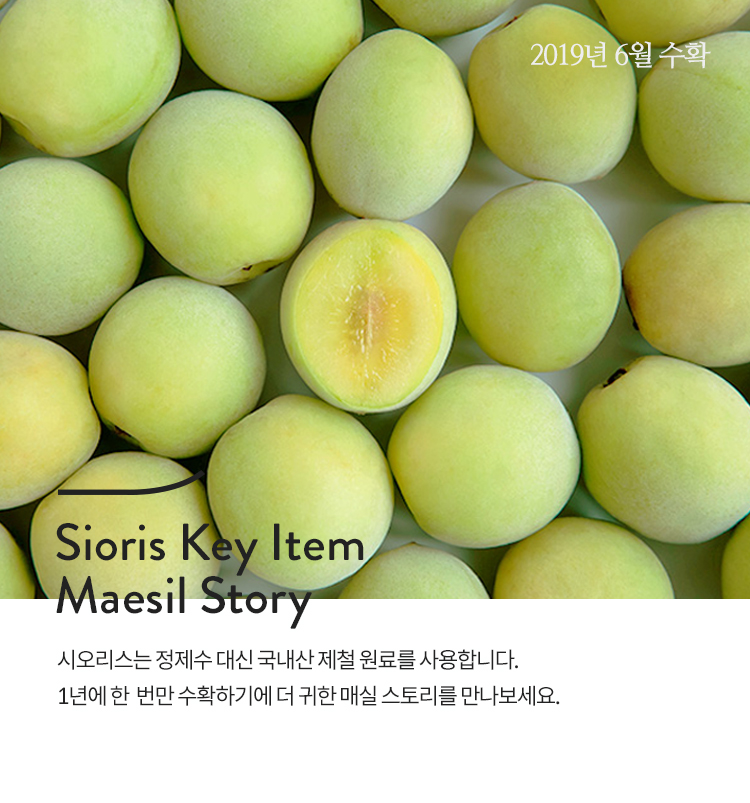 Soris key item maesil story