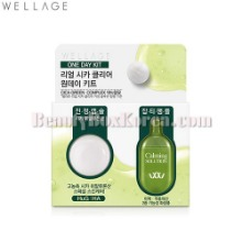 WELLAGE Real Cica Clear 1Day Kit 1ea