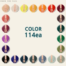 FROM THE NAIL Color Promotion 114 Set 119items