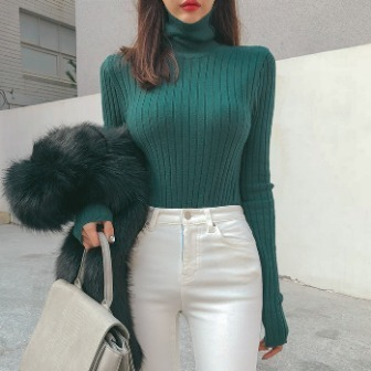 Dabagirl Turtleneck Ribbed Solid Tone Top