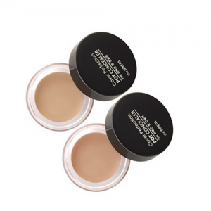 the SAEM Cover Perfection Pot Concealer 4g