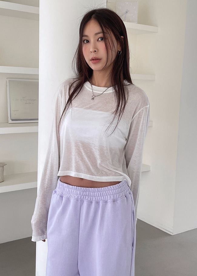 Sheer Crop T-Shirt