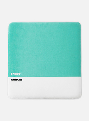 [PANTONE SALE] SHINee  SM ARTIST + PANTONE™ SITTING CUSHION
