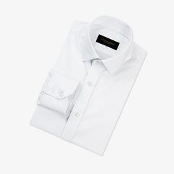 97643 프리미엄 베이직 셔츠 (White)