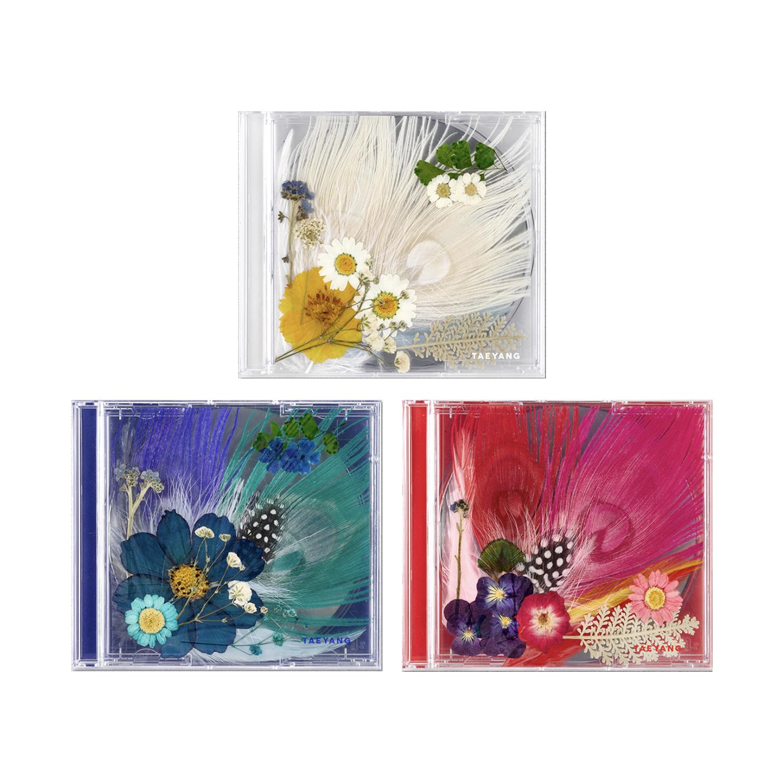 TAEYANG 3RD ALBUM X WHITE NIGHT