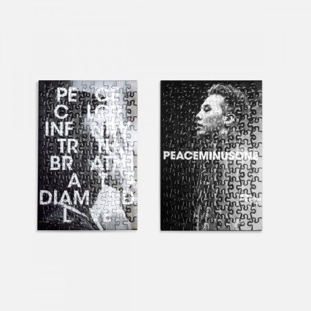 [PMO] G-DRAGON PUZZLE with FRAME